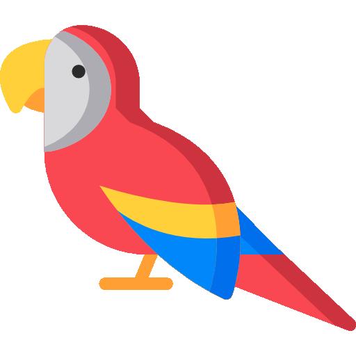 buy macaw online